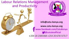 LABOUR RELATIONS MANAGEMENT AND PRODUCTIVITY Presentation by BRO GEORGE OWIDHI Economist –Central Organization of Trade Unions COTU (K)