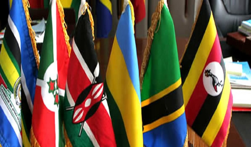 Press Release; East Africa Countries Frustrating the Common Market Protocol